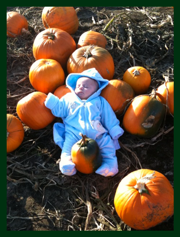 Baby asleep with pumpkins